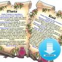 Libro heraldico decorativo